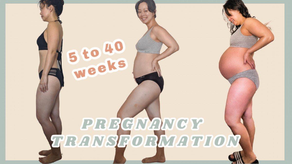 pregnancy belly week by week